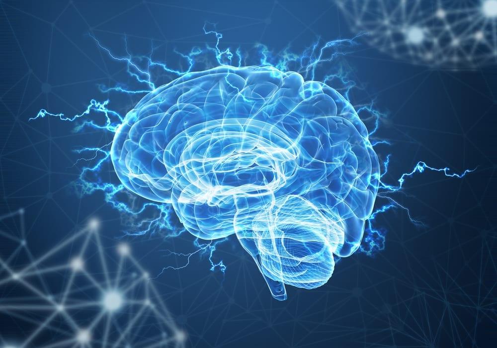 hungry on a ketogenic diet, the brain