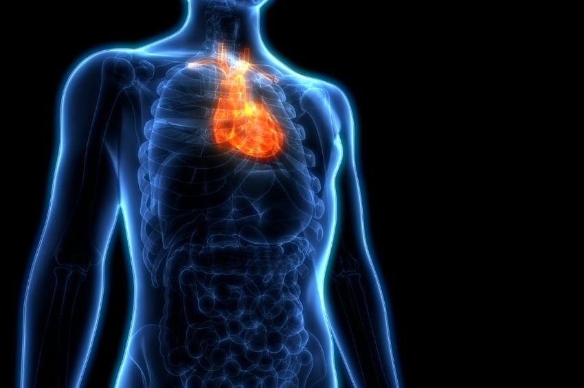 The Heart Is Primed to Use Ketones During Heart Failure