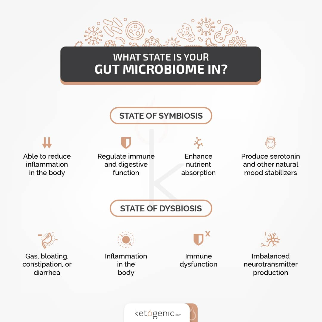 GI gut microbiome health
