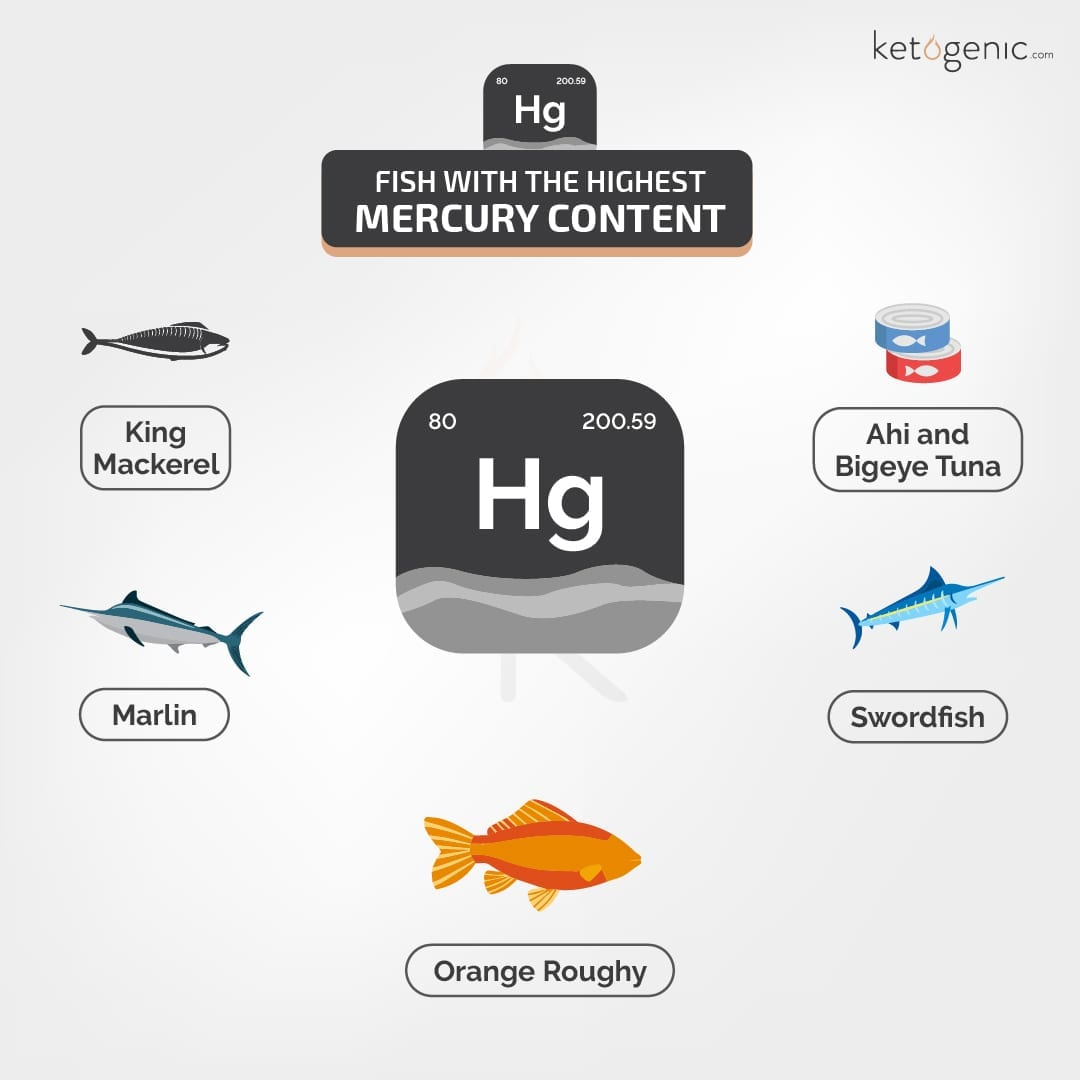Fish_with_the_highest_mercury_content