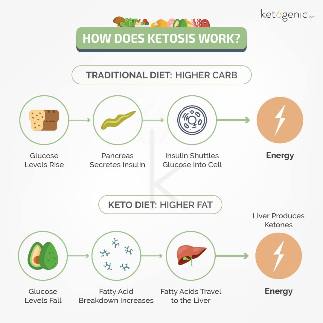 how does the ketogenic diet work