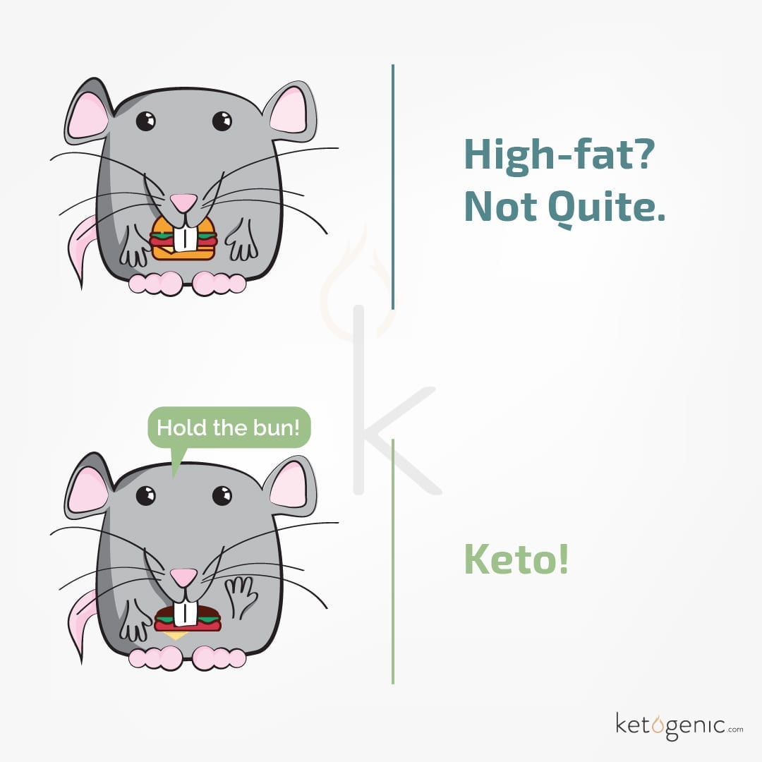keto high fat