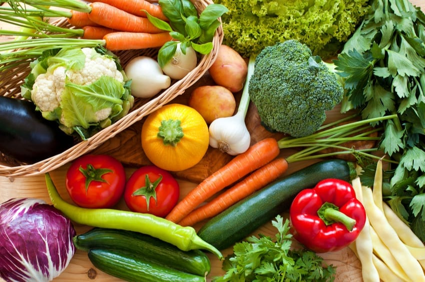 Are Vegetables Necessary in the Human Diet?