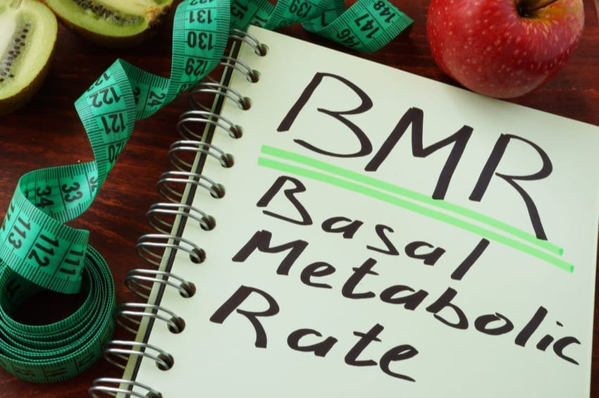 Basal Metabolic Rate (BMR) and Your Metabolism